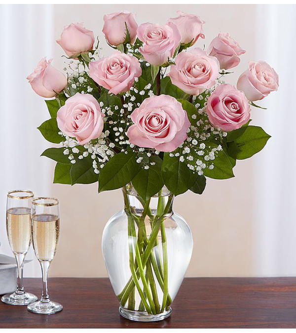 Classic Dozen Pink Roses
