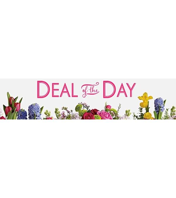 Administrative Professional's Deal of The Day