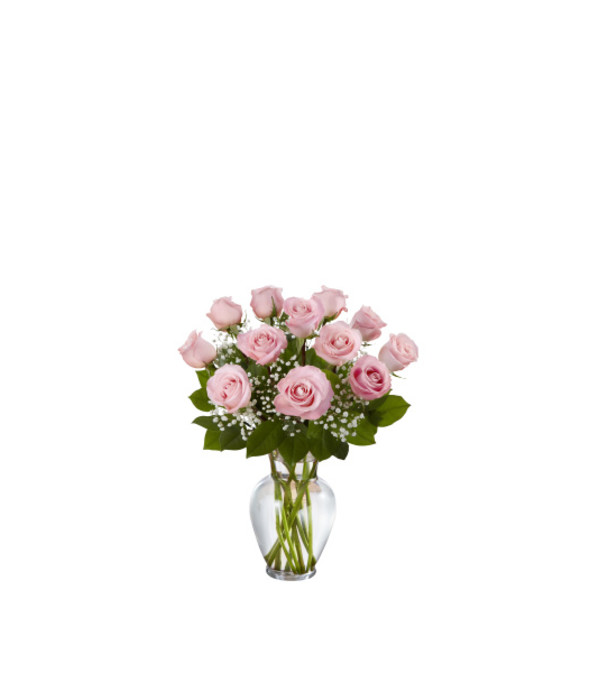 1 Dozen Deluxe Pink Roses