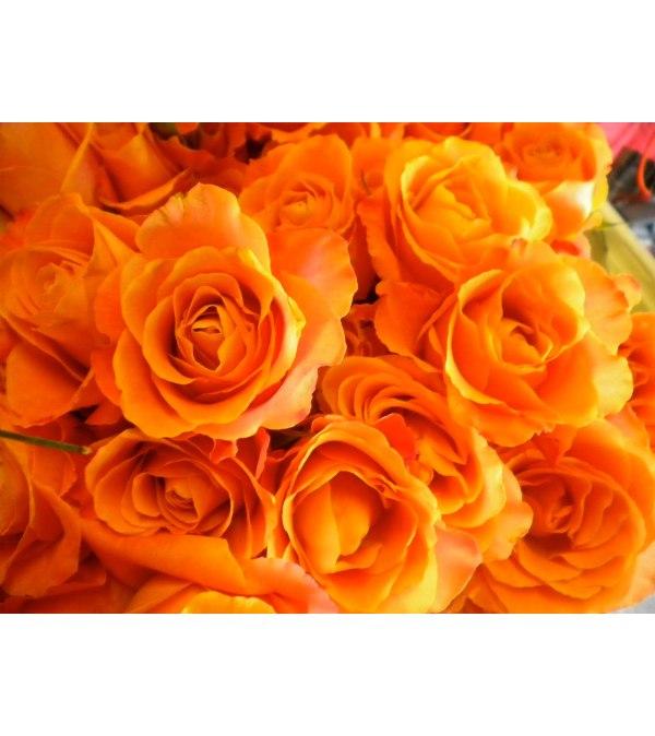 100 Premium Long Orange Roses