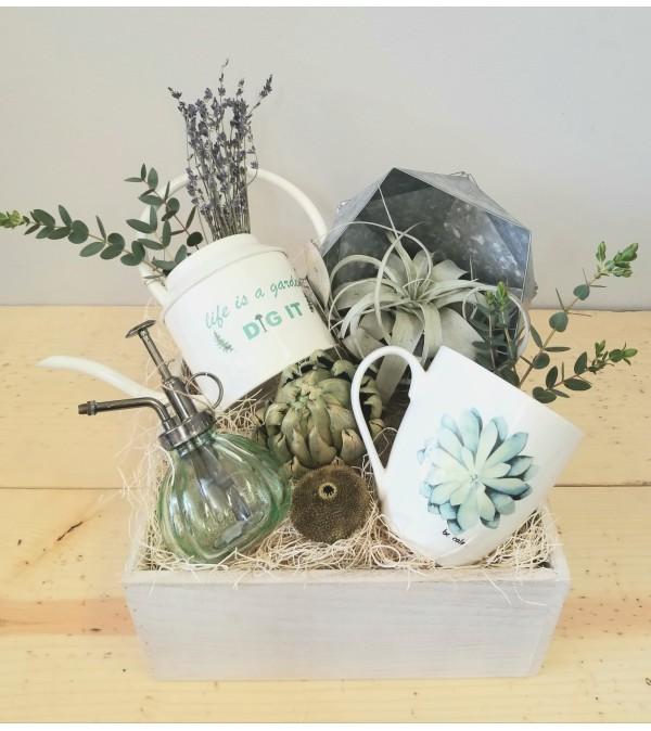 Calming Garden Box
