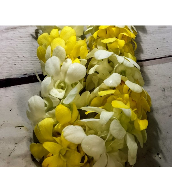 Orchid Lei Yellow and White Double