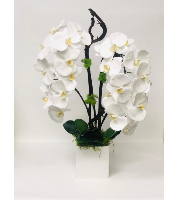 Artificial Orchid plant
