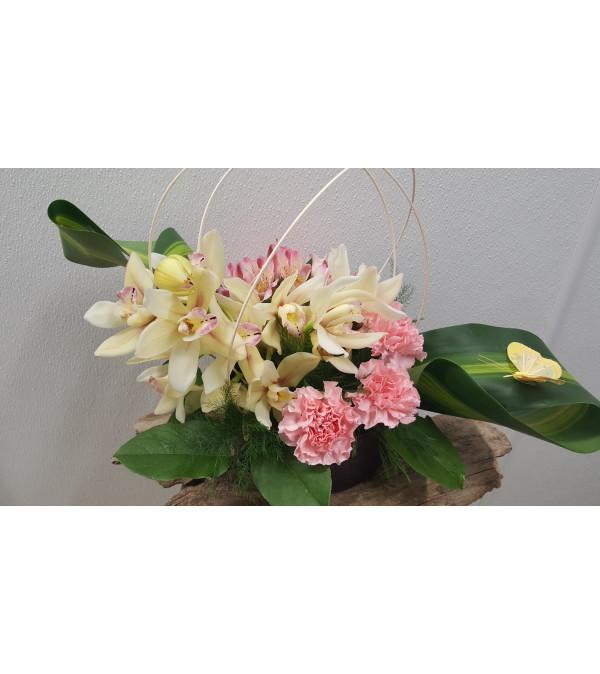 Smart Sassy Orchid Springtime