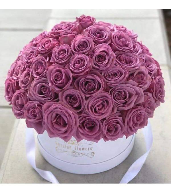 Signature Purple Rain Box