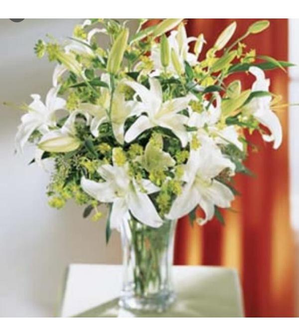 White Lily Elegance
