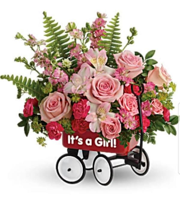 Baby Girl  Firts Wagon
