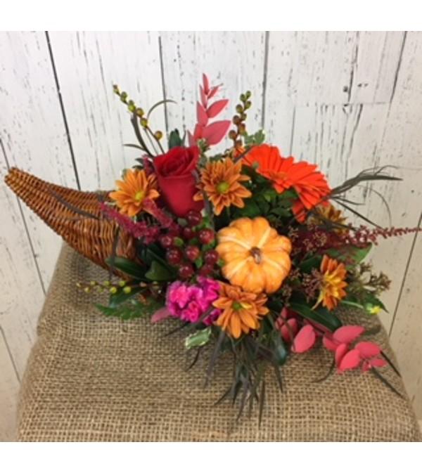 a vibrant autumn