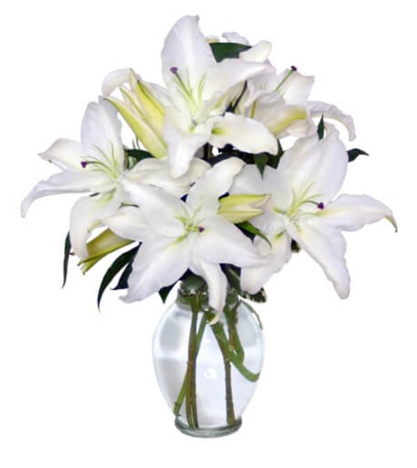 Casa Blanca Lilies Arrangement - FSN