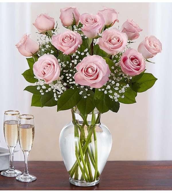 Pink Rose Elegance