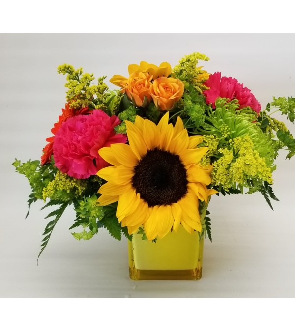 Cheering You Up (Sunflowers out of season)