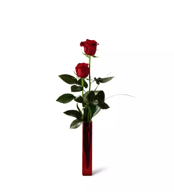 The FTD® Deeply Devoted™ Roses