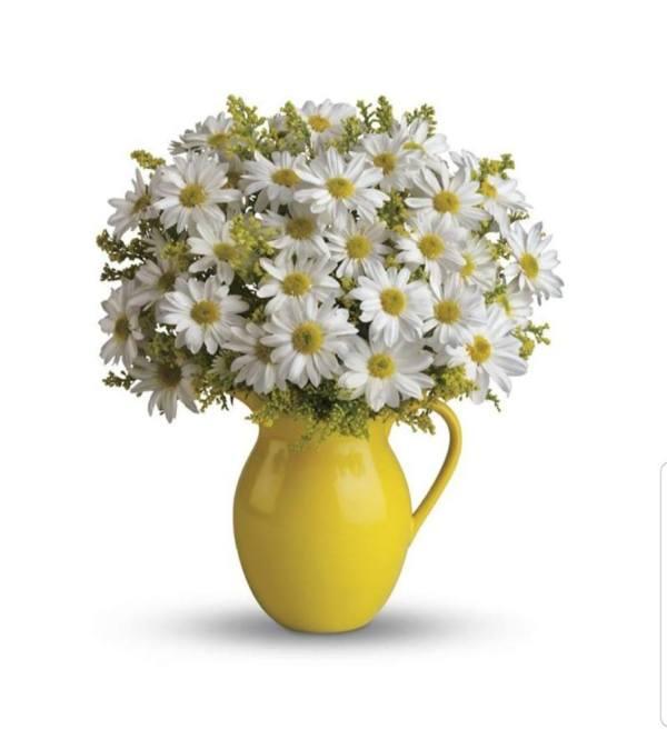 Sunshine ptcher With Beautiful White Daisies