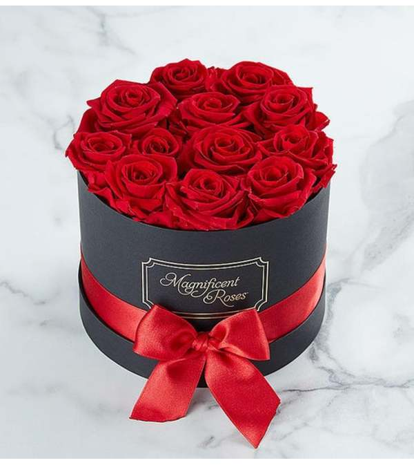 Boxed FRESH Red Roses