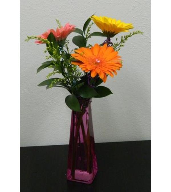 Gerbera Greeting Vase