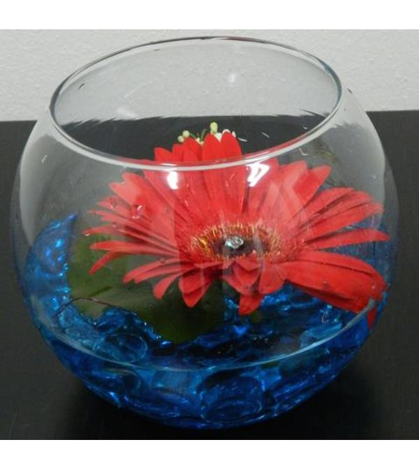 Floating Gerbera