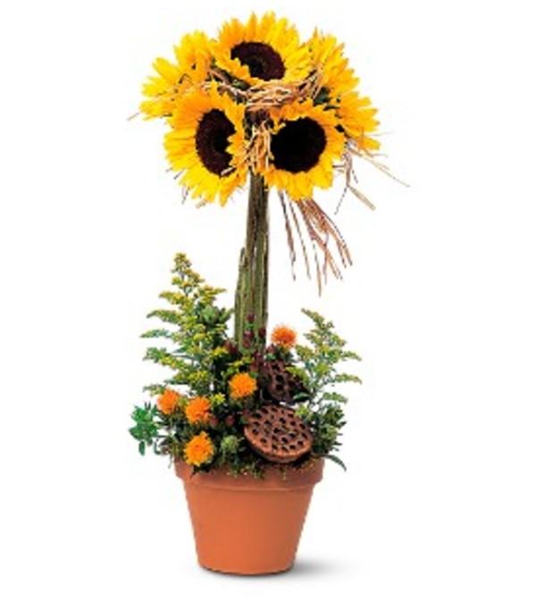 Sunflower Topiary TF