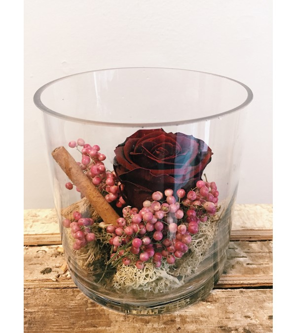 Preserved Rose (Burgundy)