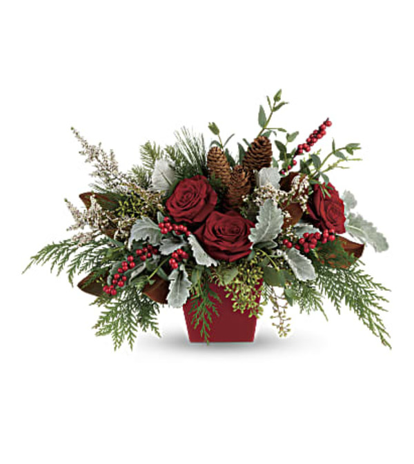 Winter Blooms by Teleflora