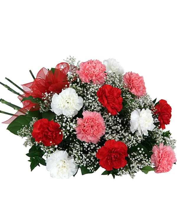 Carnation Trio Bouquet 19