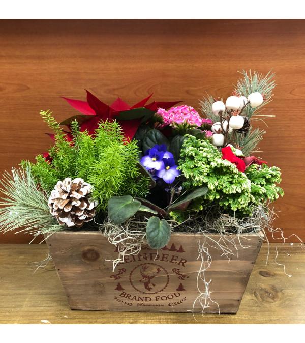 Reindeer Planter Box