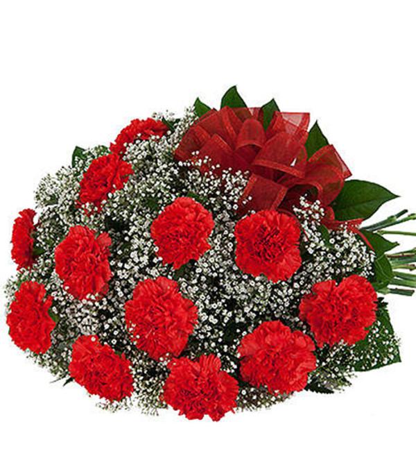 12 Red Carnation 19