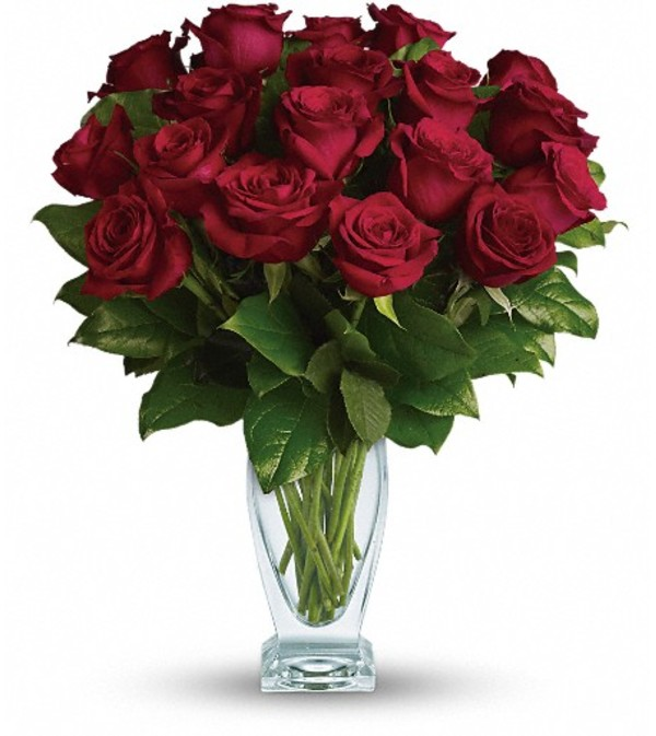 Teleflora's Rose Classique - Dozen Red Roses