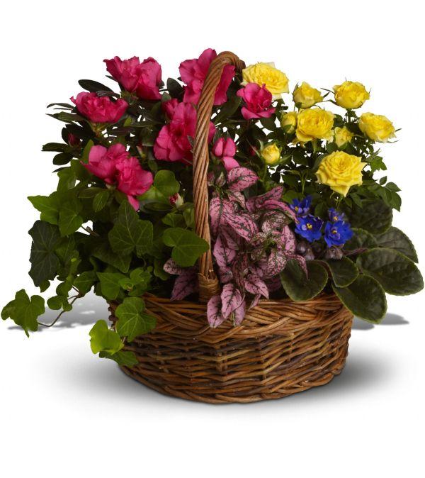 Colorful Garden Basket