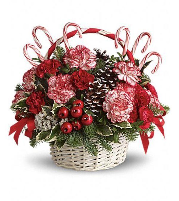 Candy Cane Christmas TF