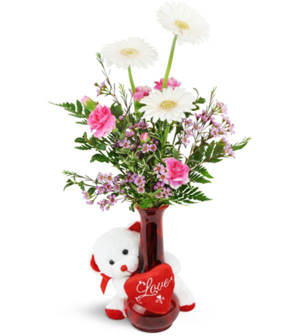 Darling Daisies With Love Bear San Antonio Tx Florist