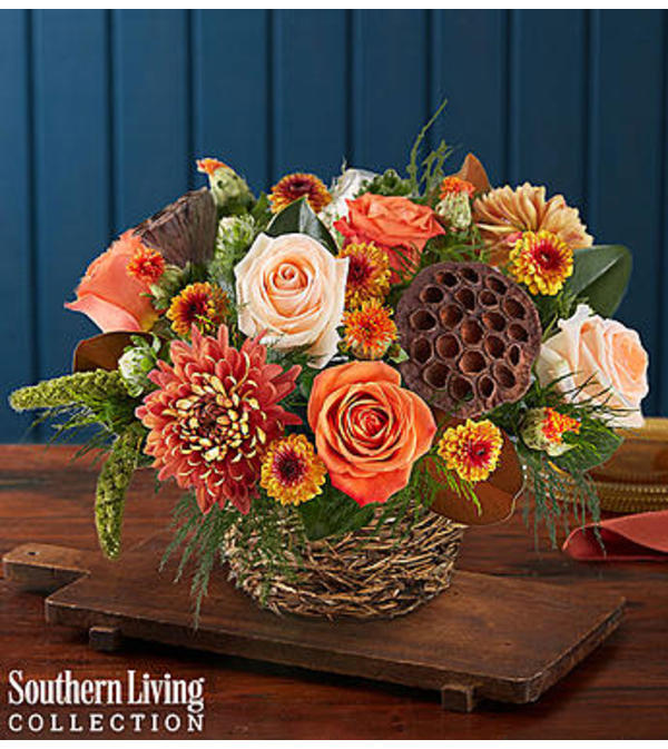 Woodland Bird's Nest™ by Southern Living®