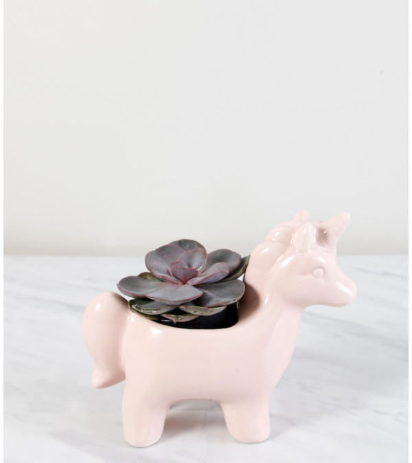Pink Unicorn Planter