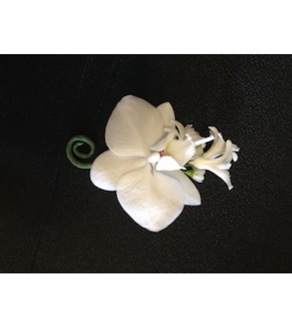 phalaenopsis boutonniere