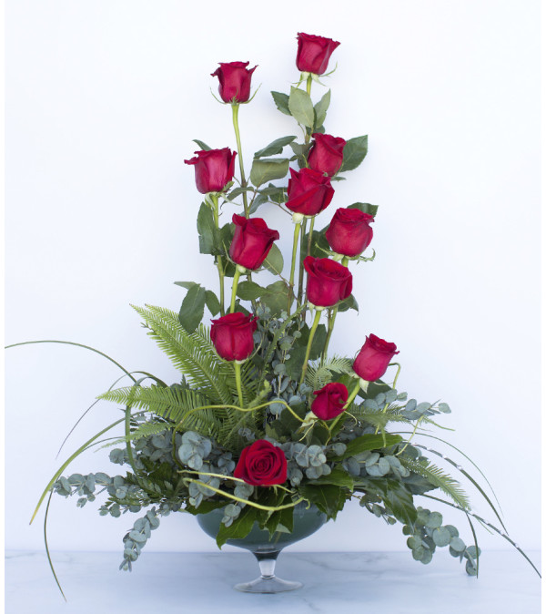 Dashing Red Roses