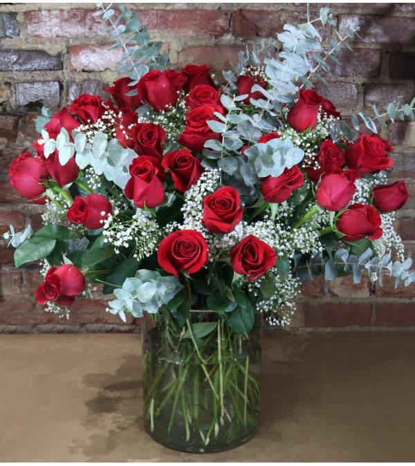 Rose Abundance