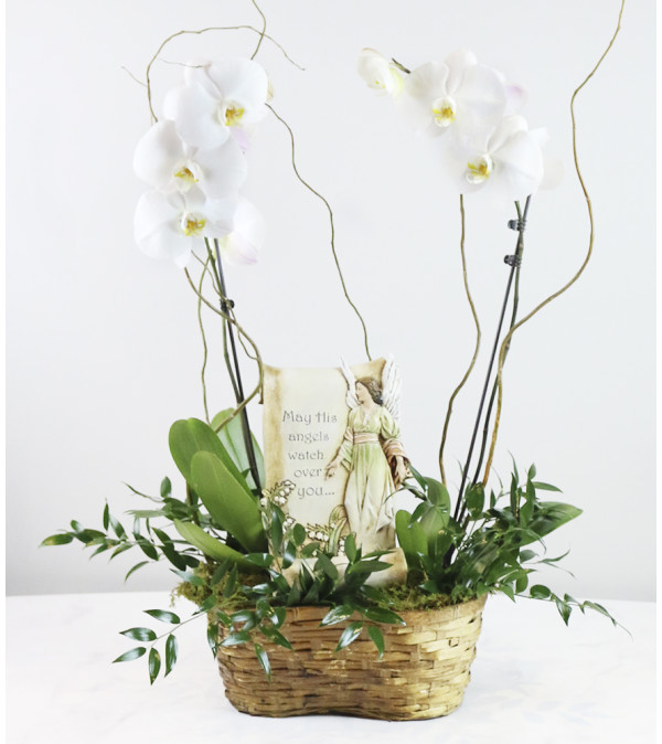 Memorial Orchid Planter Basket