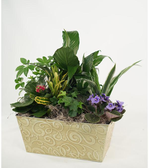 Flower Fantasy Garden Planter