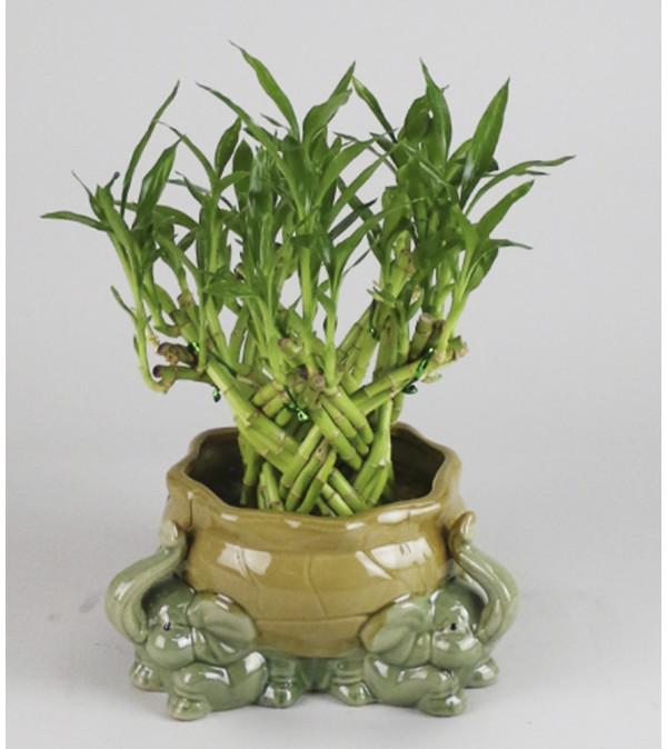 A & S Whitestone Artisan Bamboo Planter