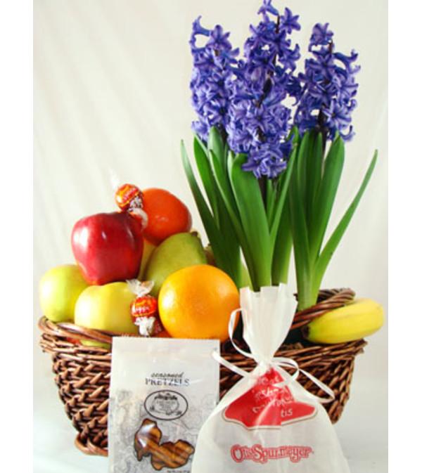 Fruit & Planter Basket