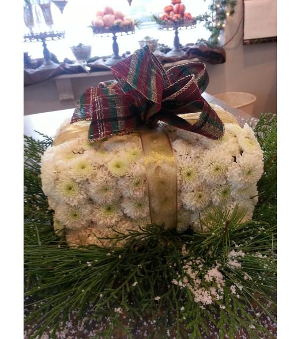 """The """"Christmas Present"""""""