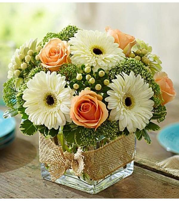 Gerbera Daisy Arrangements Vases: Modern Rose And Gerbera Daisy Bouquet
