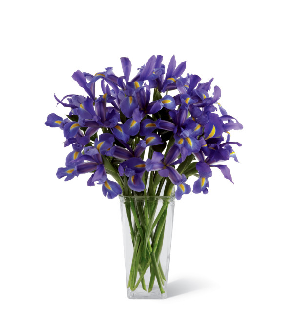 The FTD® Iris Riches™ Bouquet
