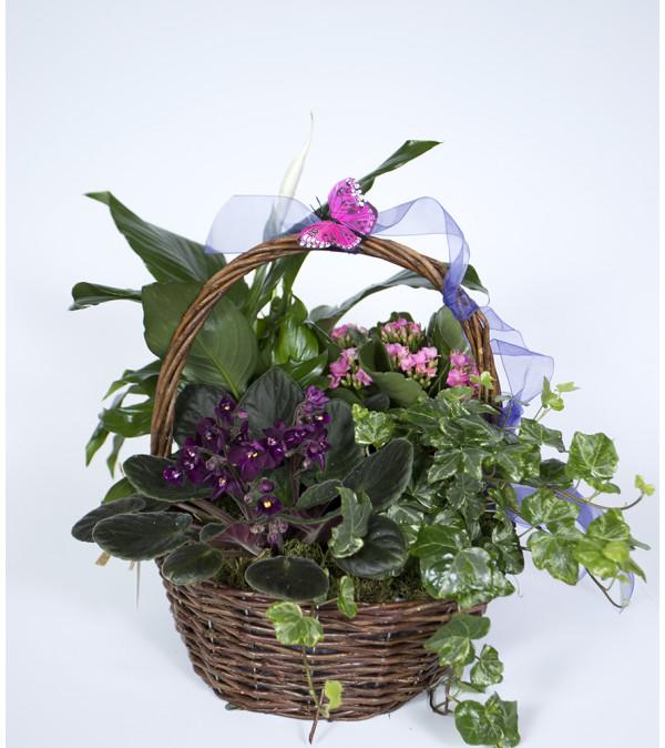Blooming Basket of Joy