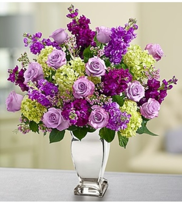 Shining Love™ - Purple