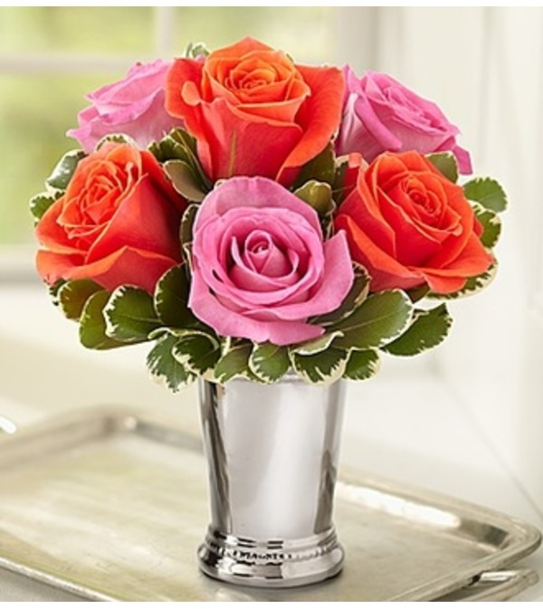 Julep Cup Rose Arrangement - Multi