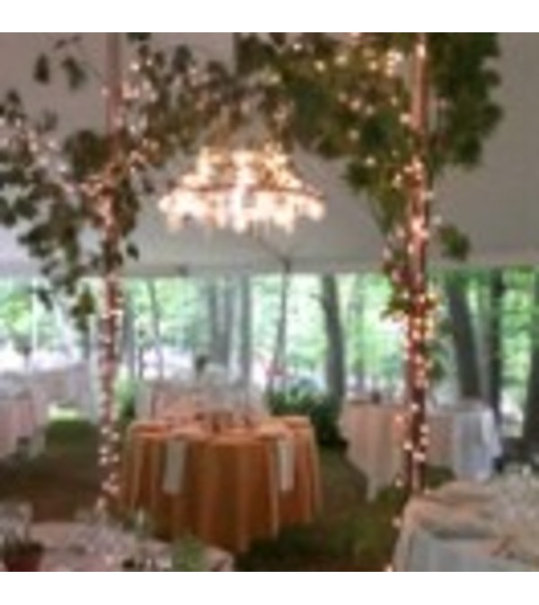 Mason Jar chandalier (rental)