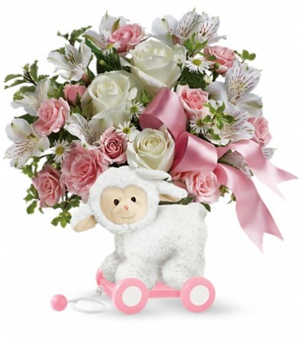 Teleflora's Sweet Little Lamb - Baby Pink