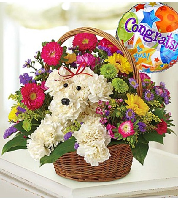 a-DOG-able® in a Basket - Congrats