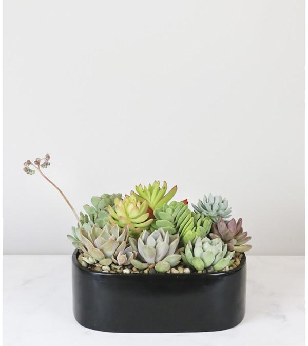 Artistic Planter