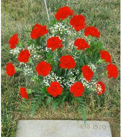 18 Ruby Carnations